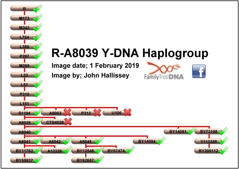 Haplogroup R-A8039